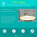 7-sales-triggers-boost-sales-and-conversion-rate_004.jpg